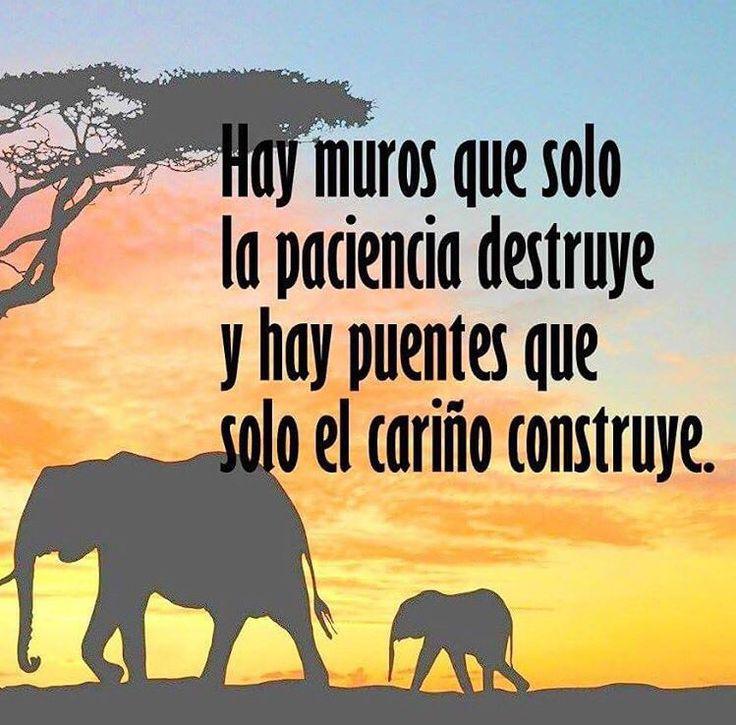 Hay muros que sólo la paciencia destruye y hay puentes que sólo el cariño construye.