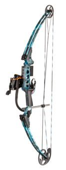 AMSBowfishing® Fish Hawk Compound Bowfishing Package | Bass Pro Shops This is my Bow I fish with!!!!