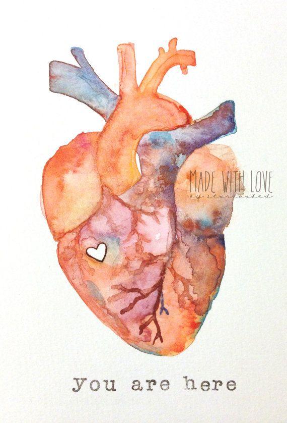 Anatomie der Liebe | Menschlicher Herz-Aquarelldruck