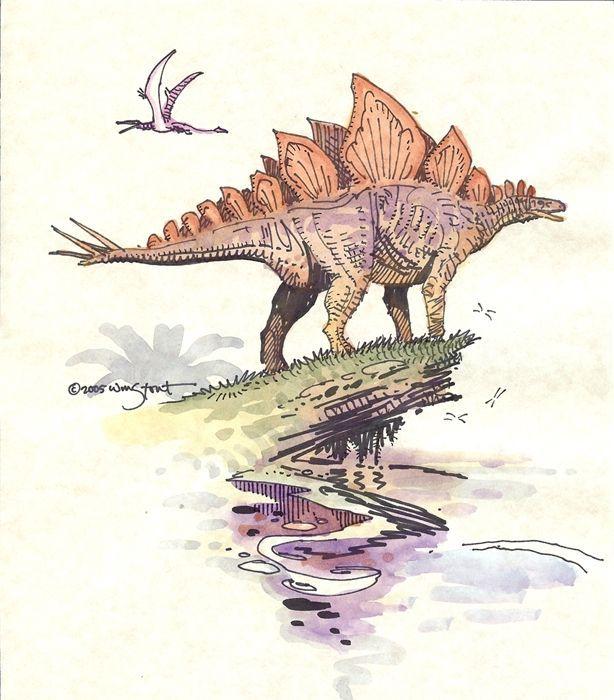 Stegosaurus   Comic Art