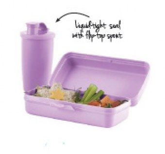 lunch set (purple daisy)