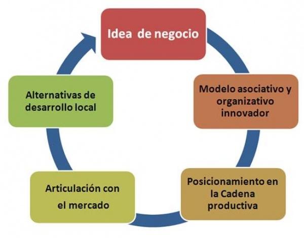La economia social y las OSFL