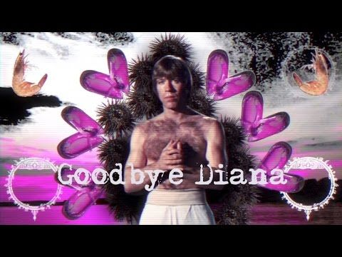 Goodbye Diana - Chuck Norris Is ****** (Official Music Video)