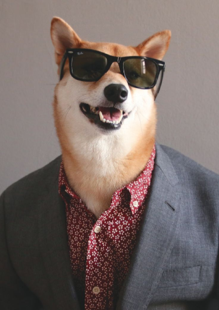 Presents From The Dog Part - 22: From Menswear Dog Presents: The New Classics By David Fung And Yena Kim  (Artisan