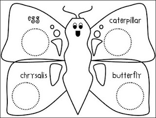 Butterfly lifecycle page to use with pasta