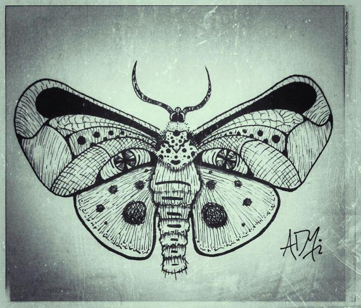 Moth / polilla / blackandwithe