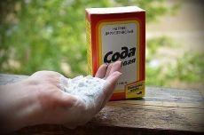 9 СПОСОБОВ ИСПОЛЬЗОВАНИЯ ПИЩЕВОЙ СОДЫ В САДУ  1. Сода от мучнистой росы. Почти каждому дачнику знакома такая напасть, как мучнистая роса. Справиться с ней вполне под силу пищевой соде. Вот два проверенных рецепта: Разведите в 1 литре воды 1 ст. л. соды, добавьте 1 ст.л. растительного масла и 1 ст. жидкости для мытья посуды. Смесь залейте в распылитель, хорошенько взболтайте. Опрыскивайте ей растения раз в неделю в облачную, но сухую погоду. В 5 литрах воды разведите 2 ст. ...