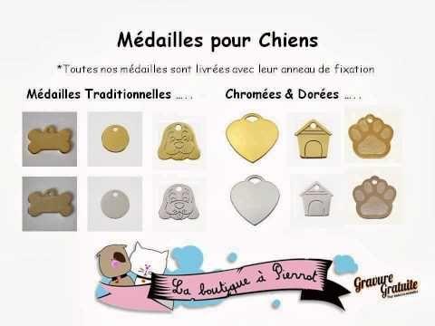 Grand choix de médailles pour chat, à découvrir sur http://www.laboutiqueapierrot.com/medailles-chat/categorie/6/medailles-pour-chat #médaille #chat