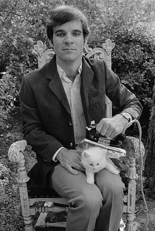 Awkward Celebrity And Cat Portraits  Steve Martin, ironing a cat