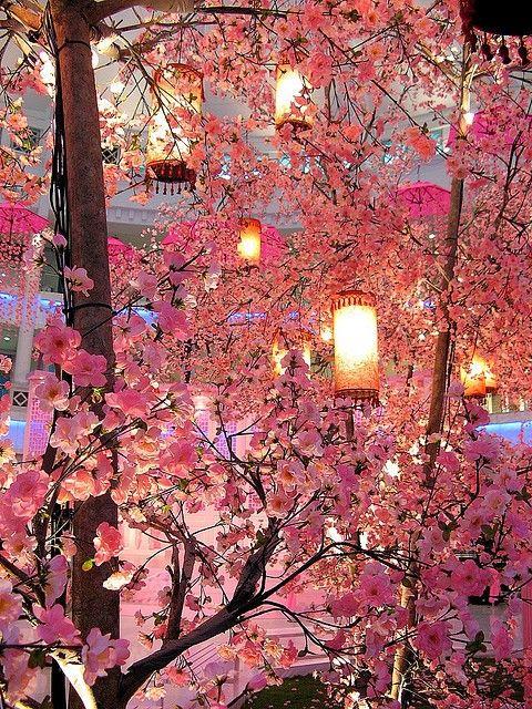 lanterns in between pink flowers