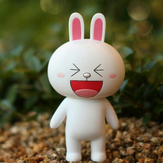 Lovely Cony!