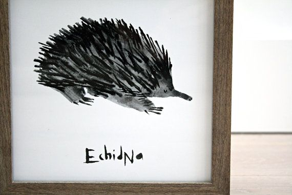 FRAMED Echidna Illustration PRINT  Giclee Art by AnniesPrintings