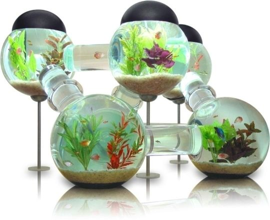 The Labyrinth Aquarium looks like a giant atomic particle science project that also happens to display tropical freshwater fish. Available in 3 colors at a whopping 6,000 dollars!