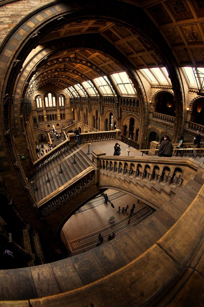 Central Hall of the Natural History Museum in London - http://www.nhm.ac.uk   #cultural #interior #public