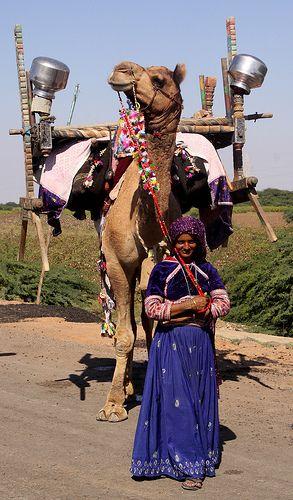 Rabari Tribe, Gujarat