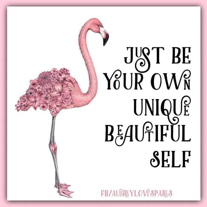 162018c39709e Just be your own Unique beautiful self | Flamingos | Flamingo art ...