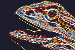Fractal Dragon Cross stitch chart, Fractal Dragon cross stitch pattern, Fractal cross stitch chart PDF - pinned by pin4etsy.com