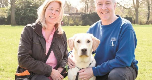 Plea Issued For More Guide Dog Trainers In Berkshire Maidenhead