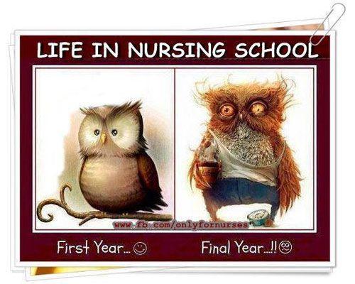 Nursing School Meme Funny : Memes about nursing laughter is the best medicine