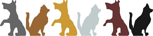 Great work being done at the Animal Welfare Society Stellenbosch
