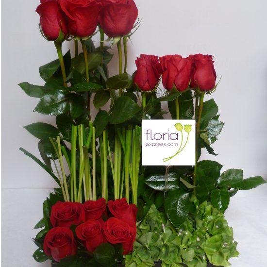 Jardín de Rosas Rojas, Enviar Flores a Colombia, flores a domicilio en Bogotá, Chia, Cota, Soacha