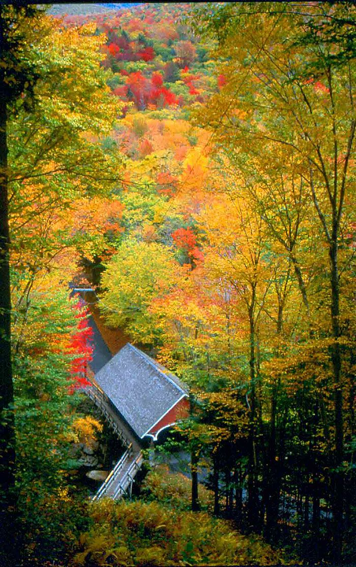 Covered Bridge and Fall foliage, Franconia Notch State Park, New Hampshire