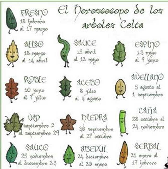 Animales Totemicos Celtas