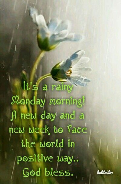 Thoughts for.. rainy monday morning.