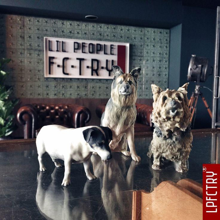 Een levensecht 3D beeld van je hond of ander huisdier, groot, kleine, glas of met krullen het kan allemaal. Honden zijn beweeglijk maar dat is voor onze scanner geen enkel probleem, om je hond gerust te stellen kun je ook plaatsnemen in de scanruimte. Lil Pets @ Lil People FCTRY