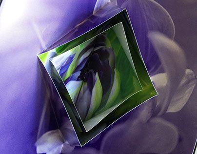 """Di recente abbiamo realizzato il visual book per la preziosa gamma di carte Splendorlux ideata da Cartiere Fedrigoni. Una parte dei visual è stata distribuita durante l'ultima edizione del Luxepack, l'esclusiva fiera del packaging di lusso (Monaco, Francia). Per valorizzare la preziosità della carta, abbiamo pensato di """"giocare"""" alternando tavole 2D e tavole 3D (pop up). Nostra, come sempre, anche la scelta delle tecniche di stampa."""