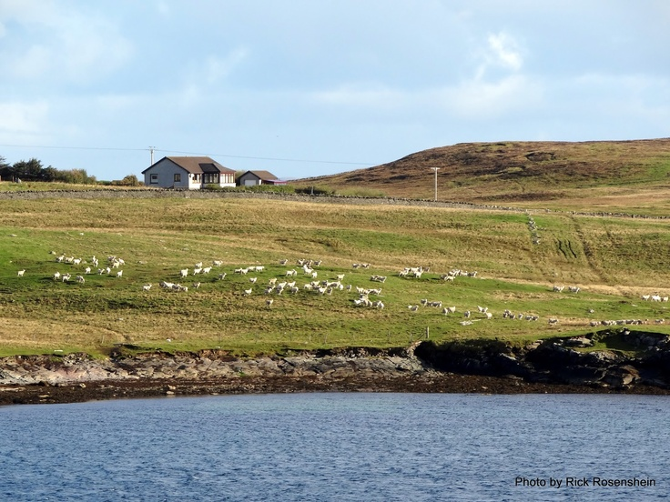 how to get to shetland islands from scotland