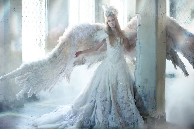 Photos, Dreams, White Queens, Growing Wings, Princesses, Angels Wings, Gratitude, Heavens, Fairies Tales