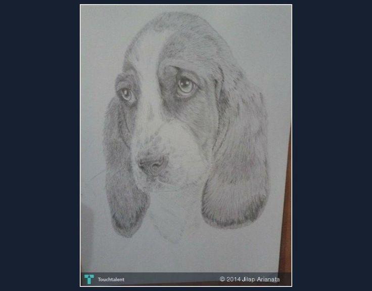 ANJING #Creative #Art #Sketching @Touchtalent.com
