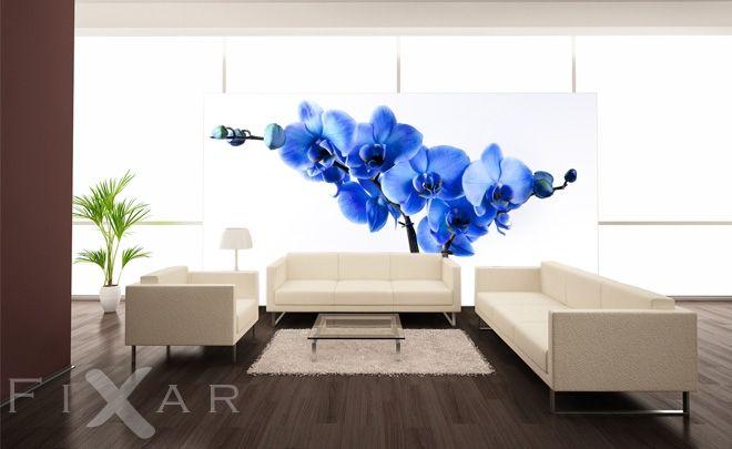 Fototapeten Glanz einer Orchidee