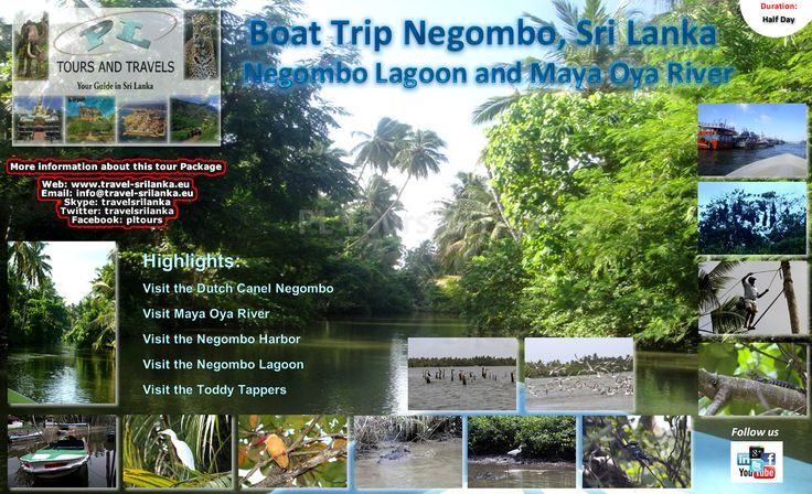 River and Lagoon Boat Trip in Negombo.