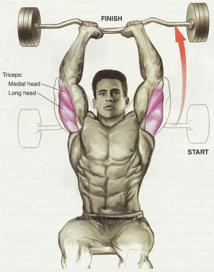 triceps | Men\'s Fitness | Pinterest | Exercises, Workout and Healthy ...