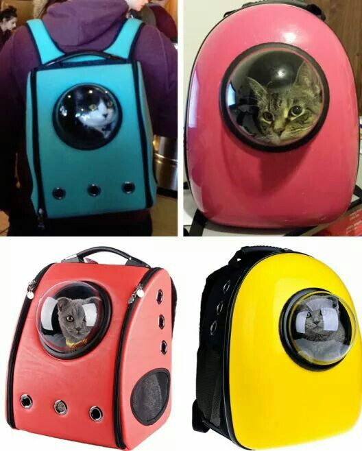 Colourful and safe cat-packs with a bubble window so your furbaby can feel like an astronaut while going out with you.