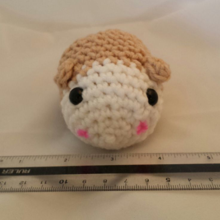 This very kawaii happy hamster is having a photo shoot and getting ready to go to its owner. These little hamsters are having so much fun lately.