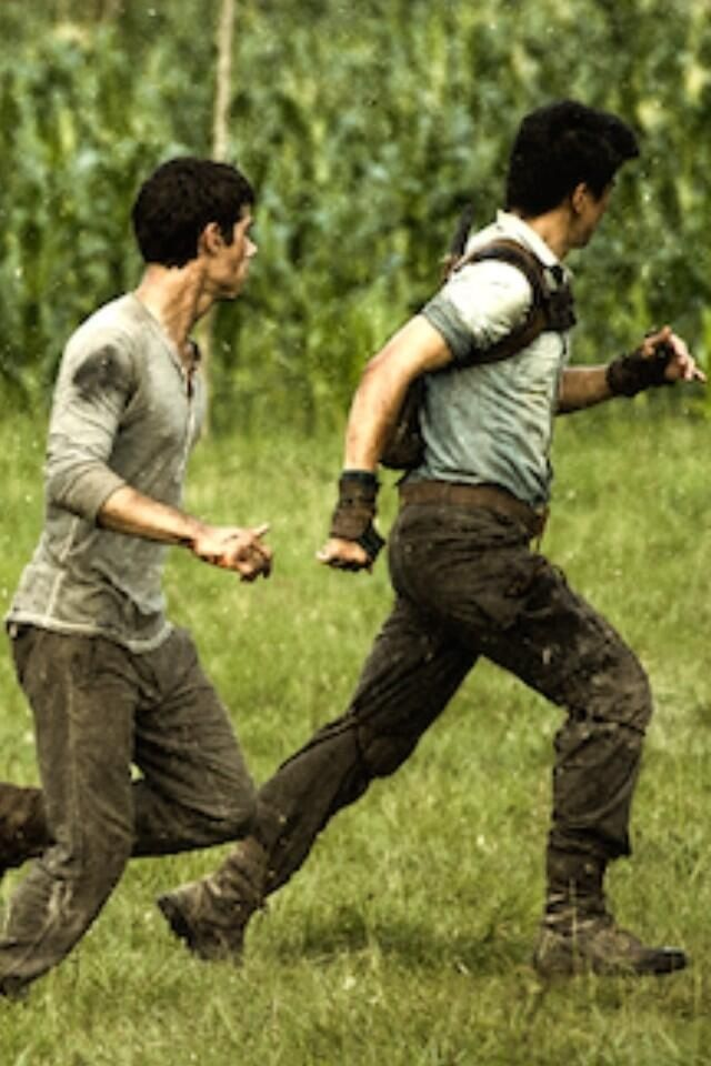 126 best images about The Maze Runner on Pinterest | James ...