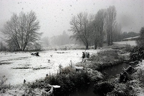 Snow in Crookwell,New South Wales, Australia, July 2011