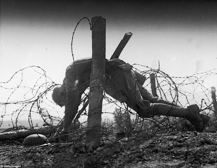 No-man's land: This U.S. soldier, who lies dead, entangled in barbed wire between rival tr...