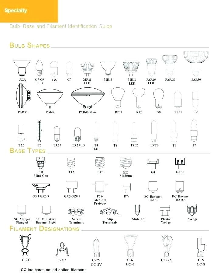 Type Of Light Bulb Bases Type A Medium Base Bulb Types Of Light Bulb Base Lamp Size Reference Light Bulb Base Typ Light Bulb Bases Light Bulb Types Of Lighting
