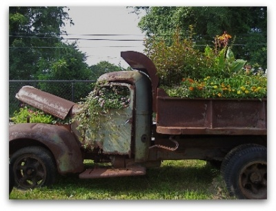 Now this is what I call a raised garden bed :)
