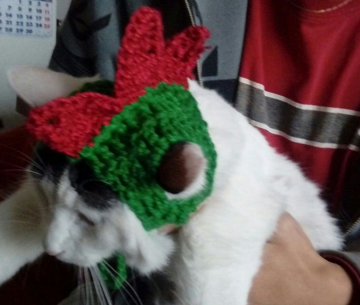 Gorrito de dinosaurio  Tejido a crochet