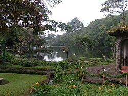 Nicaragua - Reserva Natural Selva Negra en carretera de Matagalpa a Jinotega.