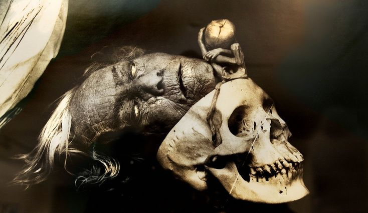 JOEL PETER WITKIN  Photographer