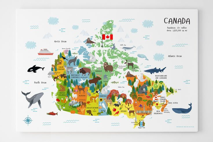 Classroom Decor Canada ~ Best canada for kids ideas on pinterest day