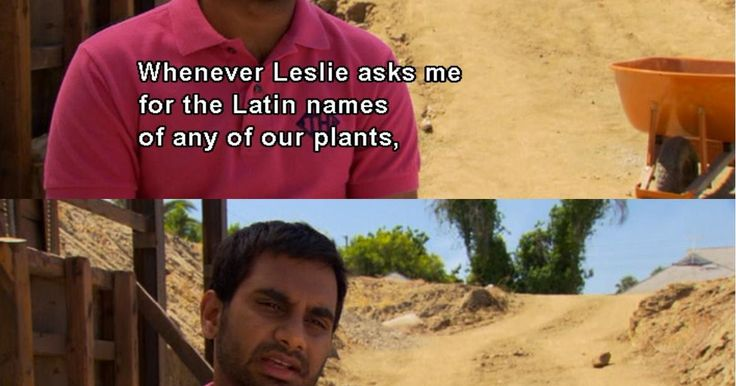 Favorite parks and rec quotes about naming flowers . Tom: Whenever Leslie asks me for the Latin names of any of our plants, I just give her the names of rappers.  Those Ludacrises are coming in great.