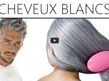 Un smoothie performant pour prévenir la chute des cheveux et en préserver la santé noté 4.5 - 2 votes On constate souvent une plus grosse perte de cheveux au printemps et en automne et cela peut paraître inquiétant. En plus, il est difficile d'y échapper et chaque année, on constate la même chose. Et bien...