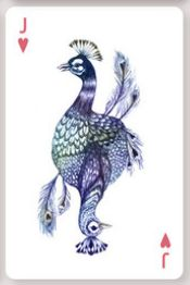 http://colossalshop.com/products/aves-playing-cards
